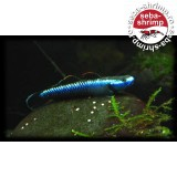 Goby Blue Neon